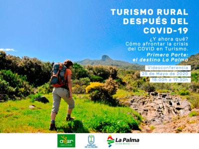 ¿Y ahora qué? Cómo afrontar la crisis del COVID en el Turismo Rural. Primera Parte: el destino La Palma (Grabación)